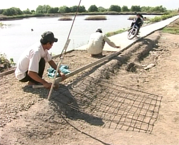Cái Nước đẩy mạnh phong trào xây dựng lộ giao thông nông thôn