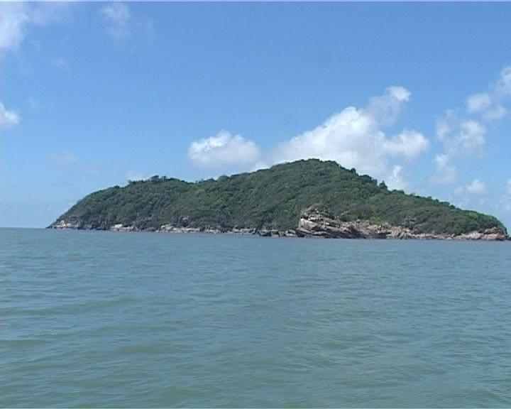 Chung tay bảo vệ biển đảo quê hương