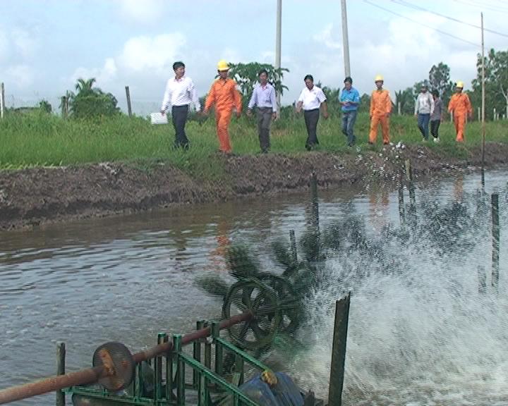 Huyện Thới Bình kiểm tra công tác sử dụng điện tại các hộ nuôi tôm công nghiệp