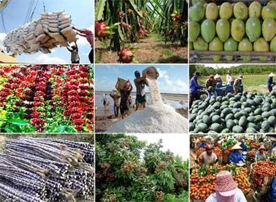 Xuất khẩu nông lâm thủy sản tăng 4,9%