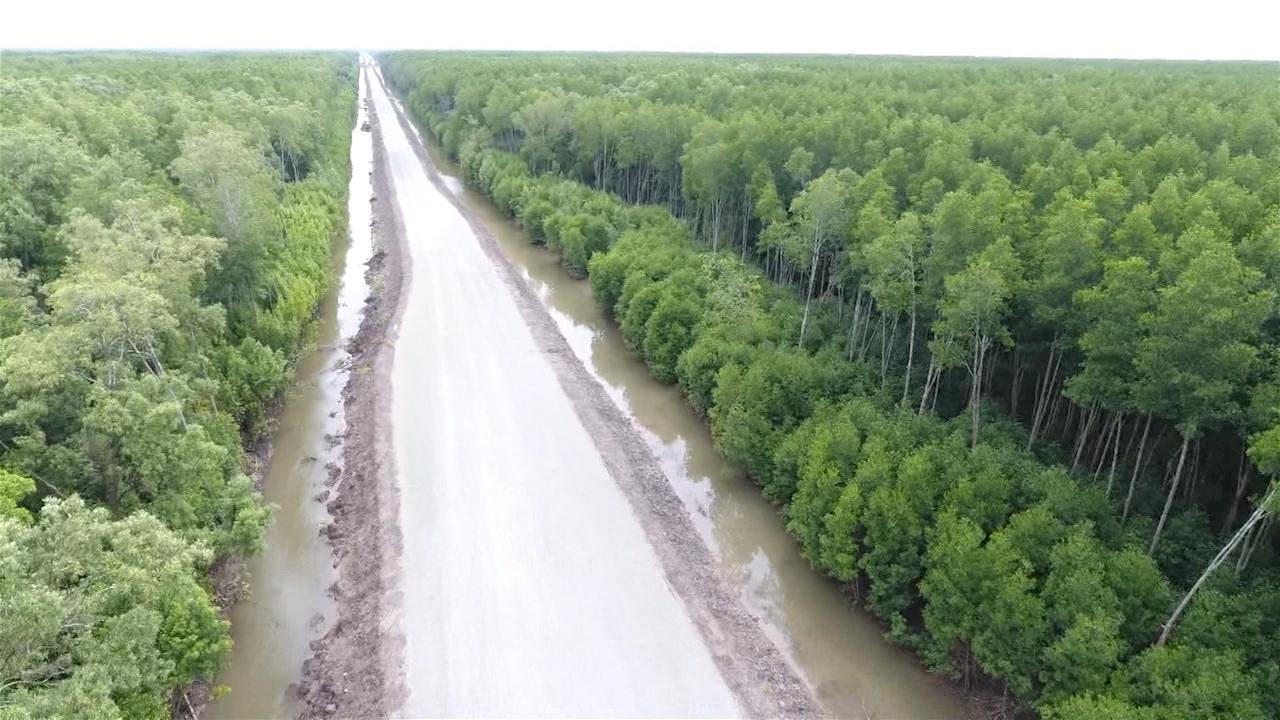 Giữ gìn màu xanh Vườn Quốc gia Mũi Cà Mau