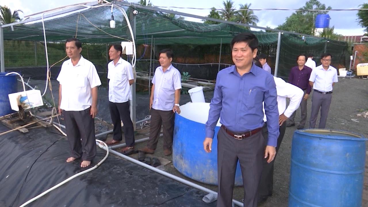 Kiểm tra mô hình nuôi tôm siêu thâm canh tại huyện Cái Nước