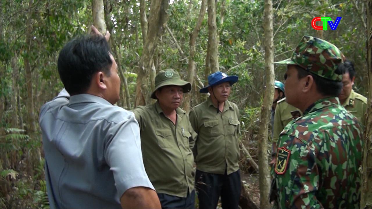 Gần 12.000 Ha rừng báo cháy cấp nguy hiểm
